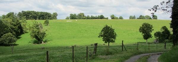 De Franse Ardennen